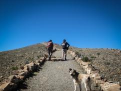2 trekkeurs et un chien
