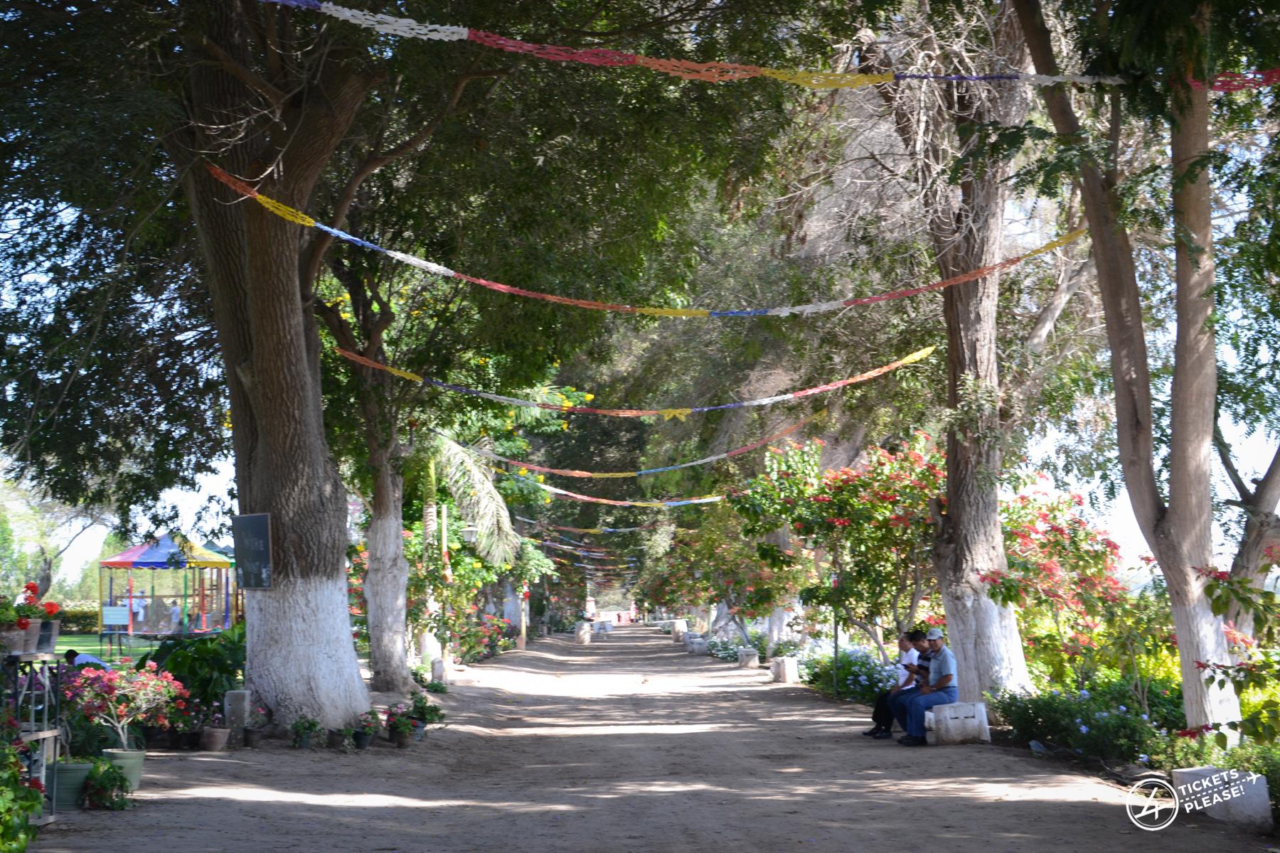La Bodega Tacama